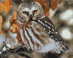 online get cheap owl mirrors aliexpress com alibaba group