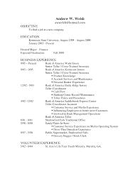 opening statement for resume example sample of banking resume free resume example and writing download cover letter resume sample bank teller lead bank teller sample cover letter resume sample bank