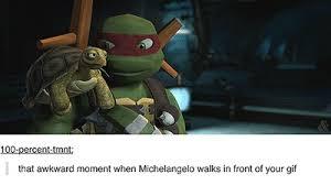 Ninja Turtle Meme - animated gifs about teenage mutant ninja turtle meme found