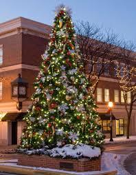 giant everest fir christmas tree with led lights 17 u0027 giant