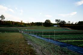 Field To Table Catering The National Historic Designation Of Cherry Basket Farm And The