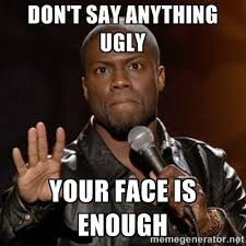 Funny Ugly Memes - don t say anything ugly your face is enough kevin hart meme