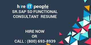Sap Sd Support Consultant Resume Sr Sap Sd Functional Consultant Resume Hire It People We Get