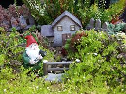 fairy gardens wigplants u2013 western independent greenhouses