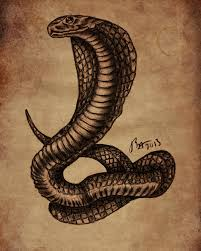 cobra tattoo sketch by cadaversky on deviantart