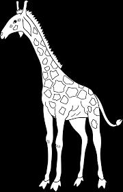 giraffe coloring page free clip art