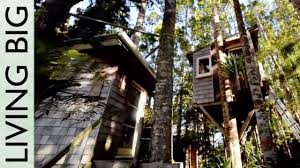 incredible diy tiny tree house tour youtube