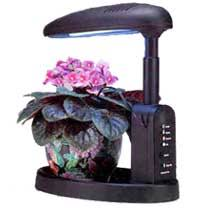 african violet grow light indoor lighting page