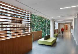 interior living walls sustainable architecture and building magazine livingwall04 jpg