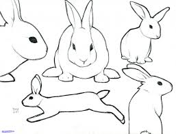 simple drawing of a rabbit leaping rabbit set abstract simple line