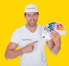 residential exterior painting prep and paint pro quality