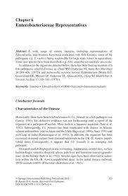 enterobacteriaceae representatives springer