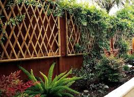 Trellis Landscaping Landscaping With Bamboo Bob Vila U0027s Blogs