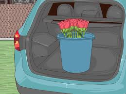 How To Transport Cut Flowers 10 Steps With Pictures Wikihow