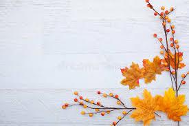 autumn thanksgiving background stock image image 58352499