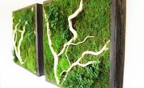 projects design indoor living wall kits diy herb garden uk canada