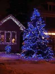 blue white christmas lights innovational ideas white and blue christmas lights outdoor led red