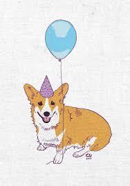 corgi birthday card u2013 jessica stasie