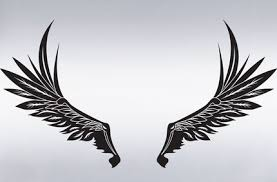 vinyl wall decal sticker wings design big size