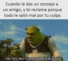 Pinches Memes - no pinches memes burro wattpad
