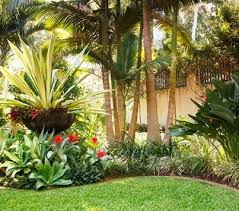 California Landscaping Ideas Tropical Landscaping Ideas Southern California Landscaping