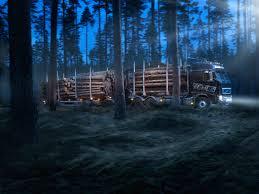 volvo 2011 truck volvo fh16 600 6 4 rigid globetrotter cab timber truck u00272009 u201312