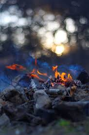 Wildfire Eternal Gatherer by 210 Best Fire Images On Pinterest Fire Photography And Nature