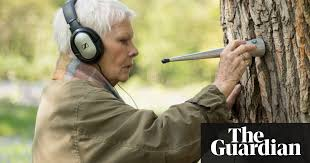 Judi Dench My Passion for Trees review – from woodland