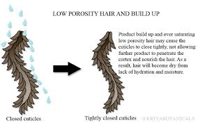 how to take care of the hair cuticle caring for your low porosity hair kriya botanicals