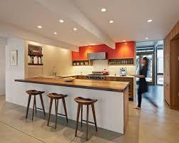 Orange Kitchens Ideas Orange Kitchen Cabinets Houzz