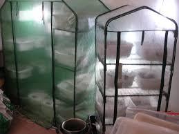 martha grow room mushroom cultivation shroomery message board