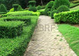ornamental gardens and bushes greenery and flowers stock