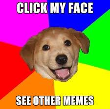 Lil Bub Meme - lil bub entirelypets