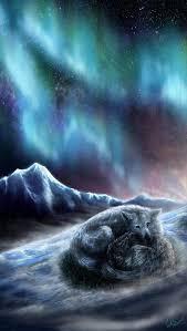 imagenes sorprendentes de lobos wolf heart by wolfroad wolf board pinterest lugares