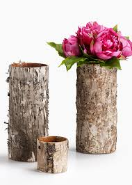 Floral Vases And Containers Birch Bark Glass Vase Add More Natural Elements To Your Floral