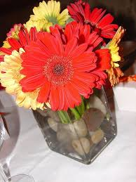 Daisy Centerpiece Ideas by 100 Best Flowers And Centerpieces Images On Pinterest Flower
