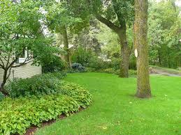 spring garden family practice yard and garden news university of minnesota extension
