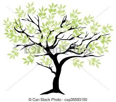 olive tree branch illustration of an olive tree clipart vector