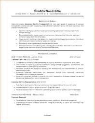 Resume Examples Customer Service Resume by Resume Summary Examples For Customer Service Resume Ixiplay Free