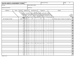 rapid needs assessment form and instructions