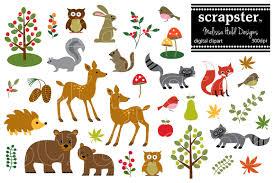 woodland animals clipart illustrations creative market