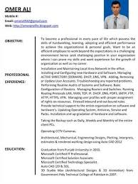 sample profile in resume professional profile on u003ca href u003d