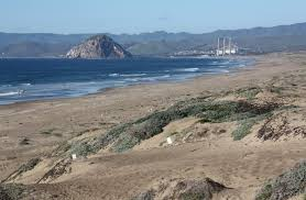 Montana beaches images Shark attack at sandspit beach near morro bay california beaches jpg