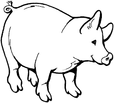 new pig coloring pages pefect color book desig 1198 unknown