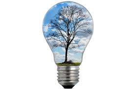 bulb light with tree free stock photo domain pictures