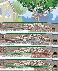 comment d饕oucher une canalisation de cuisine comment deboucher une canalisation exterieure rparation renocana