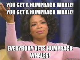 Oprah Meme You Get - oprah meme you get a humpback whale lekton info