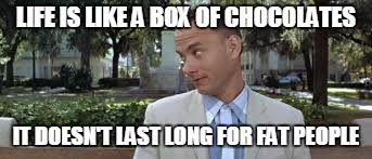 Life Is Like A Box Of Chocolates Meme - life is like a box of chocolates it doesn t last long for fat