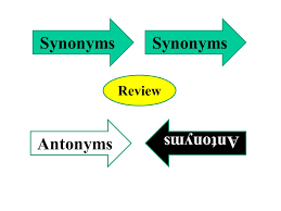 Synonyms Comfort Synonyms And Antonyms Ppt Video Online Download