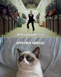 9 Best Grumpy Cat Memes - what are the funniest grumpy cat memes quora